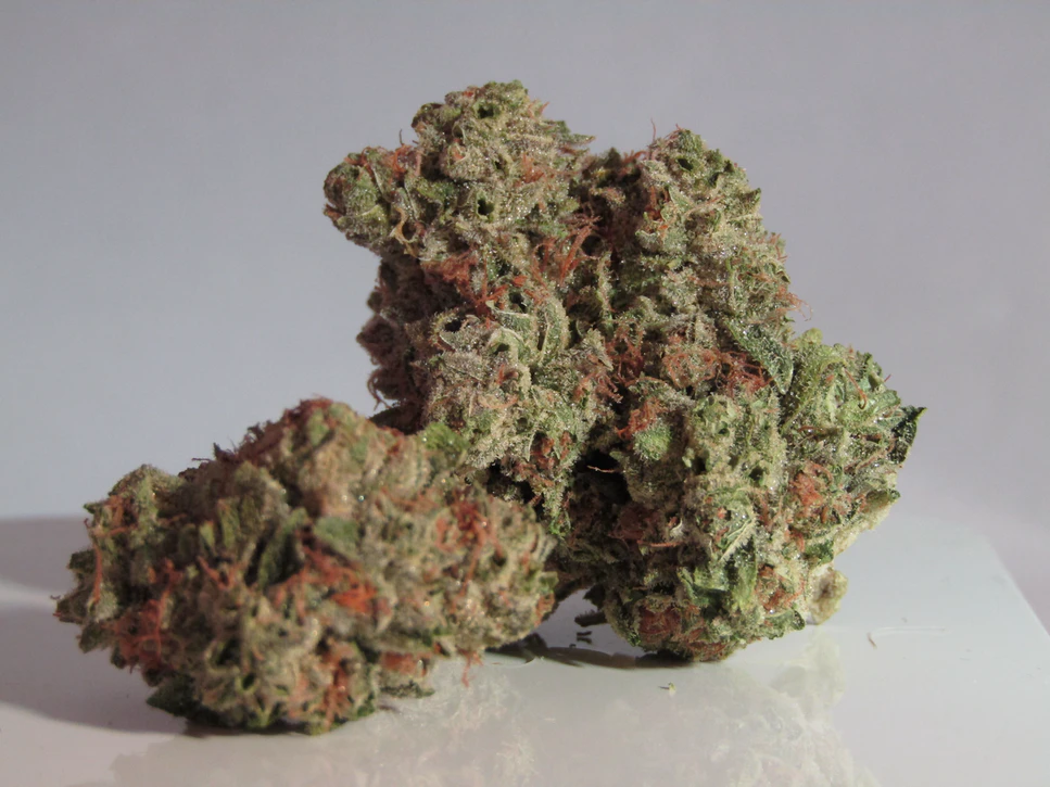 sinsemilla cannabis flower