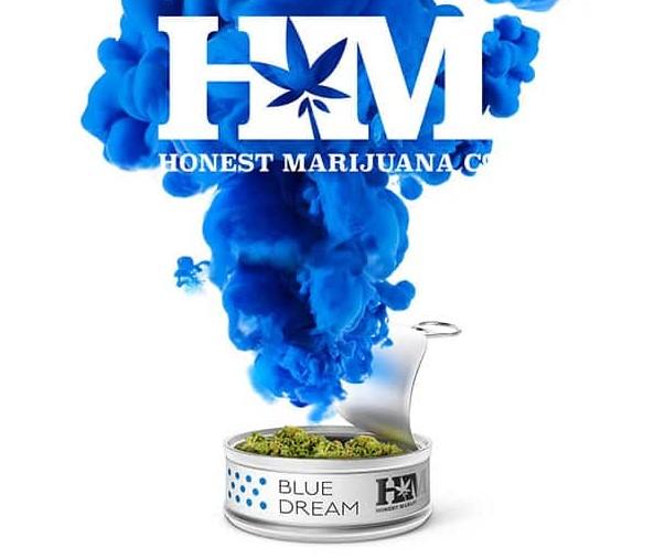 Honest Marijuana Blue Dream
